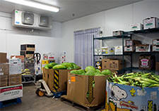 produce storage walk-in room